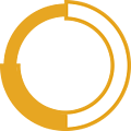 icon-ring-yellow.png