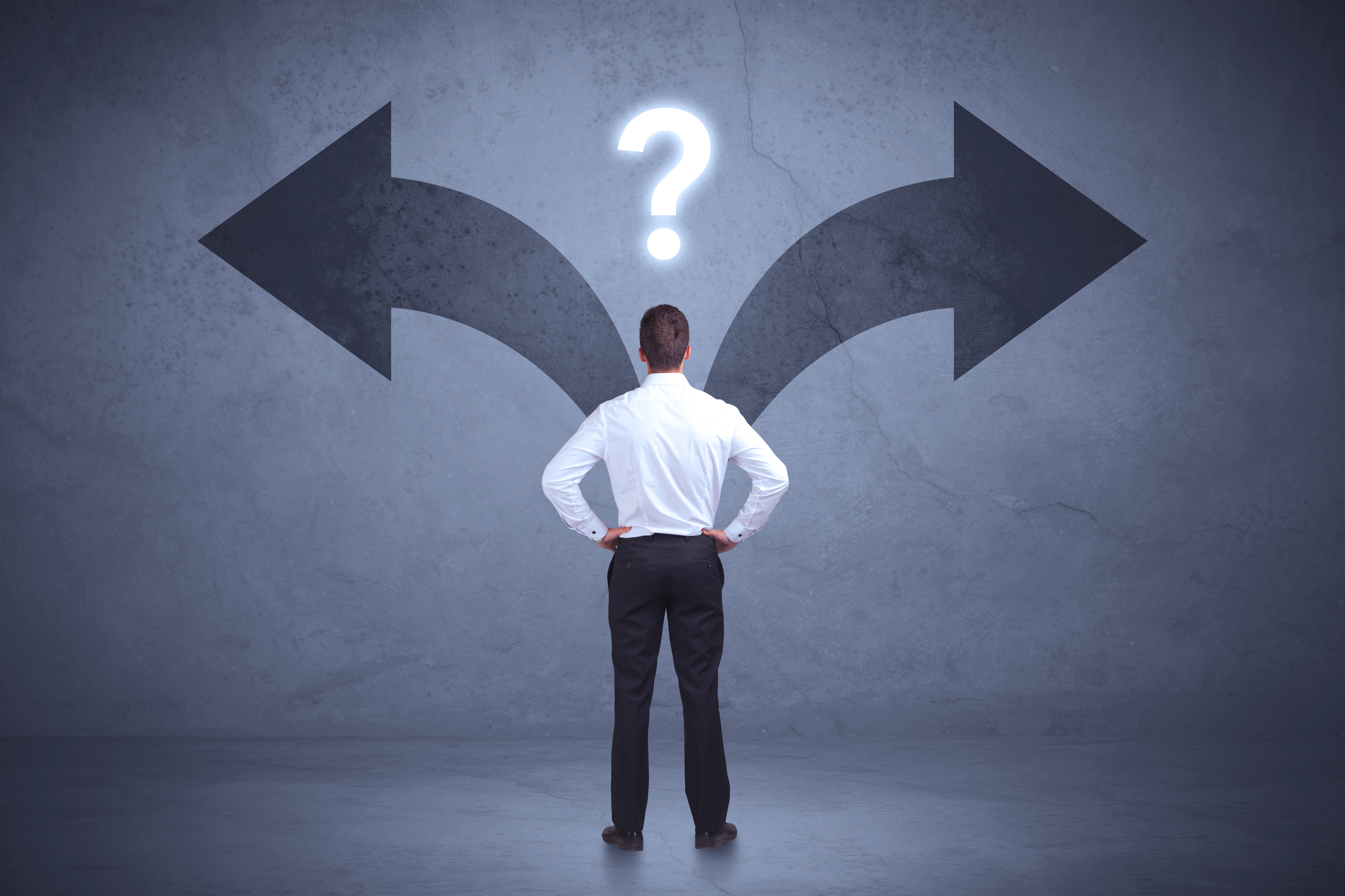 Decision-Making Process:   the What and the Why